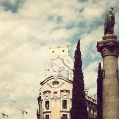 #barcelona #buho