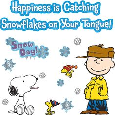 Home Peanuts® Happiness Is A Snowflake Bulletin Board Set