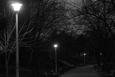 park alley by mircea.az on YouPic Park, Parks