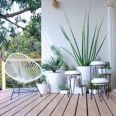 Acapulco Chairs for Minimalist Balcony Decoration – Unique Balcony & Garden Decoration and Easy DIY Ideas Patio Plants, Outdoor Plants, Outdoor Spaces, Outdoor Gardens, Outdoor Living, Balcony Plants, Indoor Planters, White Planters, Container Gardening