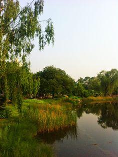 보라매공원 2013.6.2