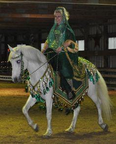 native costume arabian horse