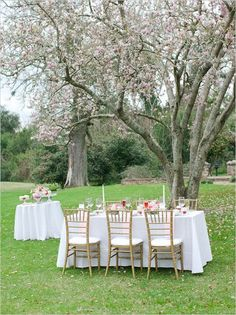 outdoor wedding ideas with gold pink red and white #weddingreception #valentinesday #weddingchicks http://www.weddingchicks.com/2014/02/10/elegant-valentines-day-ideas/