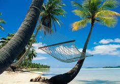 Tropical Beach Hammock Enjoy the most beautiful beaches of Caribbean Hammock Beach, Outdoor Hammock, Beach Pink, Beach Day, Sunny Beach, Pink Summer, Summer Sun, Dream Vacations, Vacation Spots