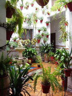 Courtyard, Cordoba, Spain  photo by borya