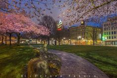 Sidewalk, Mansions, House Styles, Portland, Home, Decor, Walkway, Mansion Houses, Decoration