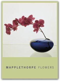 Robert Mapplethorpe Flowers | The Robert Mapplethorpe Foundation - Mapplethorpe Flowers by teNeues ...