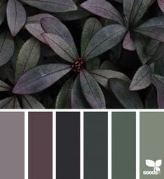 Explore Design Seeds color palettes by collection. Design Seeds, Room Color Schemes, Paint Schemes, Vintage Color Schemes, Color Concept, Green Colour Palette, Green Pallete, Plum Color, Color Balance