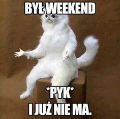 Happy weekend messages, memes with saturday quotes and images