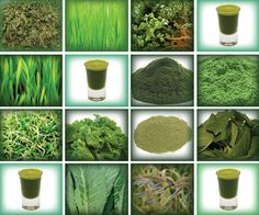 Include These 5 Green Super Foods in Your Diet with Easy Green Recipes