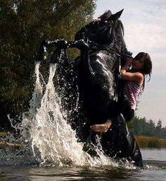 Find images and videos about horse, black horse and girl riding on We Heart It - the app to get lost in what you love. All The Pretty Horses, Beautiful Horses, Animals Beautiful, Cavalo Wallpaper, All About Horses, Black Horses, Wild Horses, Horse Pictures, Horse Photography