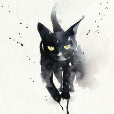 Shadowcat – Blule, The Boutique