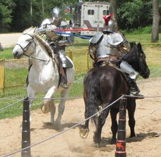 Jousting - Olde English Faire at Wild Life Prairie Park - Taken by Pat Curtis in June of 2014