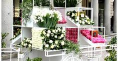 Local Florist Shops,  https://www.phpbb.com/community/memberlist.php?mode=viewprofile&u=1543181  Flower Shops Near Me,Flower Shop,Flower Shop Near Me,Flower Shops,Flowers Near Me,Floral Shops Near Me
