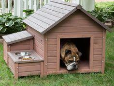 41 Modelos incríveis de casinhas de cachorro