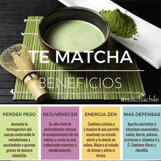 #TéMatcha Beneficios: Perder Peso Rejuvenecer Energía Zen Más Defensas Compras en www.matchachile.cl / Envío a Domicilio vía Chilexpress ----------- #matcha #beneficios #propiedades #energía #peso #rejuvenecer #defensas #matchachile #teverde #chile