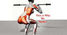 Different Types of Squats – Switch it Up for Amazing Legs!