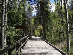 Great Wheelchair Accessible Hikes Website
