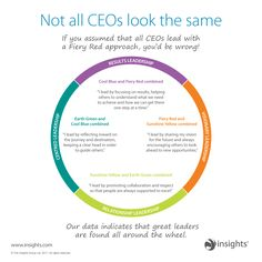 Not all CEOs look the same. They sit all around the Insights Discovery wheel.