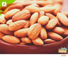 Amêndoa é um fruto seco muito apreciado nas receitas. Você sabia que amêndoas contêm vitamina E, que é um poderoso antioxidante para nutrir a pele e prevenir o envelhecimento?