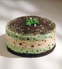 This Grasshopper Ice Cream Cake is easy to make and infinitely adaptable — use your child's favourite ice cream flavour and food colouring!