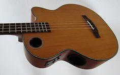 Boulder Creek Solitaire Cedar Top  Acoustic /Electric 4-Str Bass EBR3-N4