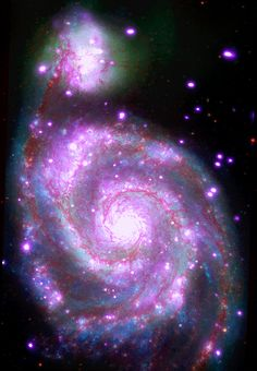 """This galaxy, nicknamed the """"Whirlpool,"""" is a spiral galaxy, like our Milky Way, located about 30 million light years from Earth. This composite image combines data collected at X-ray wavelengths by Chandra (purple), ultraviolet by the Galaxy Evolution Explorer (GALEX, blue); visible light by Hubble (green), and infrared by Spitzer (red). (Credit: X-ray: NASA/CXC/SAO; UV: NASA/JPL-Caltech; Optical: NASA/STScI; IR: NASA/JPL-Caltech)"""