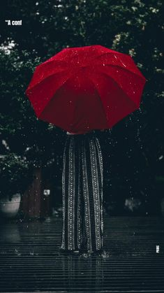 Lightroom, Rain And Coffee, Rain Pictures, Umbrella Photography, Rain Wallpapers, Raining Outside, Umbrella Art, Somerset, Rainy Days