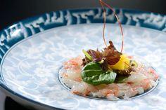 Botan Ebi Carpaccio in Ceviche Ceviche, Sashimi, Food Presentation, Food Art, Panna Cotta, Food And Drink, Asian, Fish, Adventure
