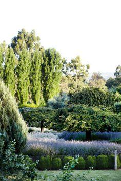 The stunning landscape at Lavandula Swiss Italian Farm. Daylesford Victoria