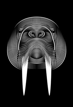 I am the walrus Art Print by Patrick Seymour