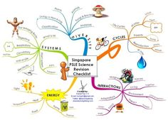 Science Revision Checklist : mind map