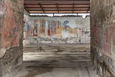 Painted Pompeii