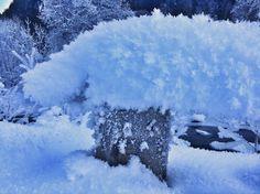 The frost bites down in the valleys. Still winterwonderland. Best Powder, Run Around, Patagonia, Frost, Christian, Snow, Adventure, Instagram Posts, Outdoor