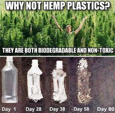 Hemp plastic is increasingly becoming a viable option as an eco-friendly alternative to carbon-based plastic. Not only is this bioplastic sourced from safe and sustainable hemp plants, but it is also typically both biodegradable and recyclable. Save Our Earth, Save The Planet, Angst Quotes, Truth Quotes, The More You Know, Faith In Humanity, Global Warming, Mother Earth, Climate Change