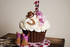 Cowgirl cake for a cake smash  https://www.facebook.com/pages/Takes-the-Cake/186859238077280?fref=ts