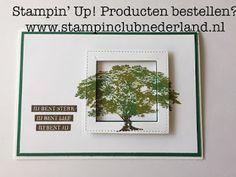 StampinClubNederland - Stampin Up! producten en workshops : Techniek Workshop - Eclipse kaarten