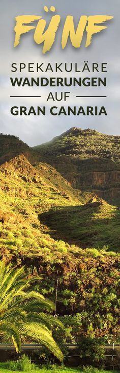 5 Wanderrouten auf Gran Canaria FIVE really nice hikes in Gran Canaria for which you don't have to be an athlete. Walking Routes, Next Holiday, Canario, Europe Destinations, Canary Islands, Just Go, Really Cool Stuff, Traveling By Yourself, Athlete