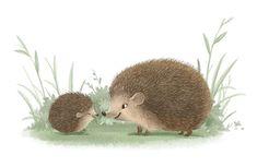 Sydney Hanson Illustration.