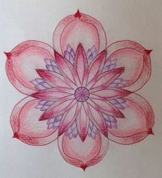 Lotus roze-paars