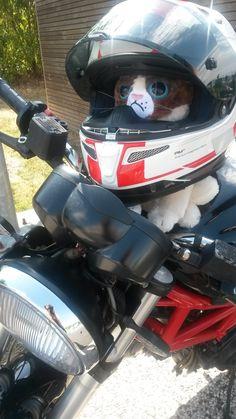 Grumpy LDLC fait de la moto