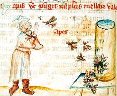 Concordantiae-caritatis-ulrich-lilienfeld-stiftsbibliothek-151-vers-1349-1351