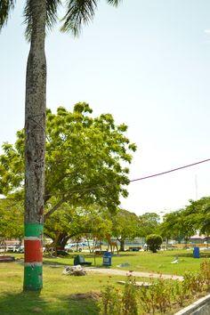 Public park near the market of Nickerie