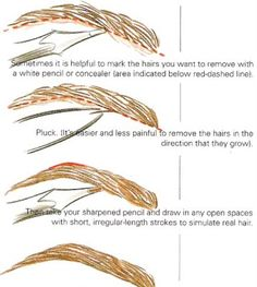 how to fill in your eyebrows.