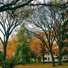 What an incredible fall we've enjoyed on campus this year! #cordmn (Photo: @sydleedagny)