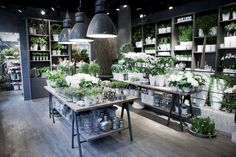 Welcome to an inspiring flower shop. Our experienced staff are on hand to create the ultimate gift of flowers to cater for your individual needs. We offer a large variety of hand tied seasonal bouquets, trendy pots and special interior items. We offer flower delivery in the Stockholm area, and the rest of Sweden/the world. …