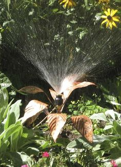 Keep all your landscaping watered and beautiful without sacrificing your curbside appeal with the Artisan Handmade Copper Gladiolus Sprinkler.