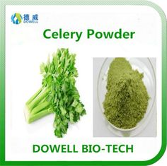 Celery Powder - Dowell Bio-Tech focus on producing 100% pure natural fruit and vegetable powders by the advanced manufacturering technology. All the raw materials comply with organic standards, contains variety of vitamins and acids; With pure flavor, good taste, super water solubility, can be widely used in pharmaceutical and health care products, health food, infant food, beverage, dairy products, sport drinks and other fields.