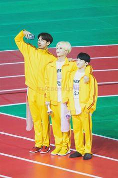 From Tallest to shortest 🤣 Really cute Seventeen Memes, Jeonghan Seventeen, Seventeen Debut, Wonwoo, Seungkwan, K Pop, Diecisiete Memes, Onii San, Vernon Chwe