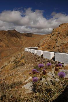 Betancuriapass, Fuerteventura